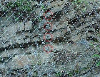 consolidamento arrivo pareti in roccia