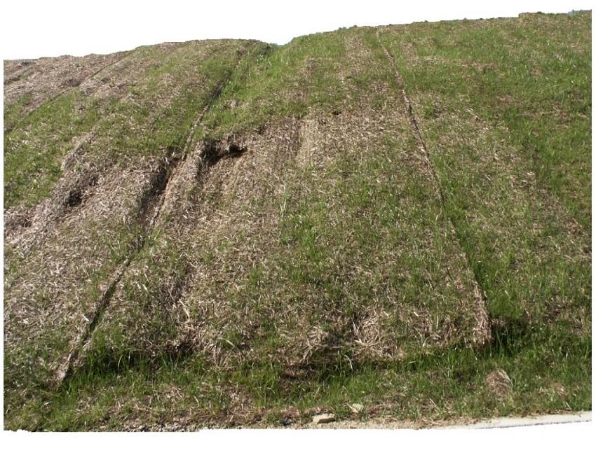 erosione Pavimant PC